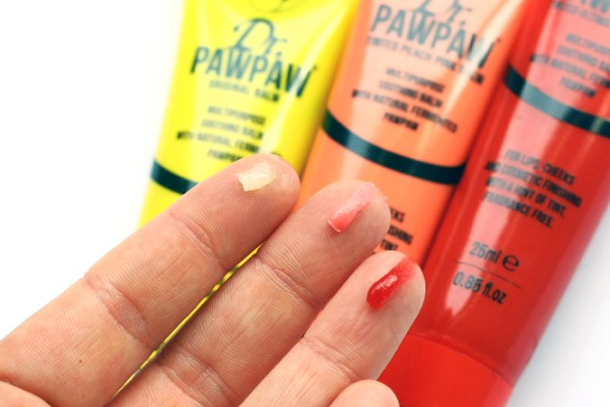 PawPaw3