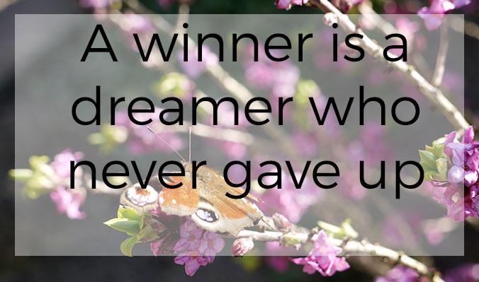 winnaar_1